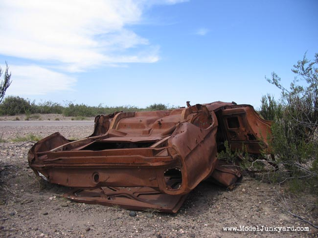 Post image for Patagonian desert flower – 1976 Ford Falcon – Junk car